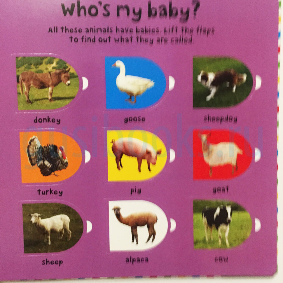 Priddy Baby Lift-the-flap Farm