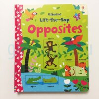 Lift-the-Flap   Opposites  (board book)