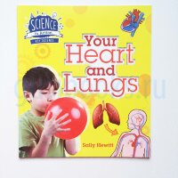 Your Heart and Lungs  (Science in Action)