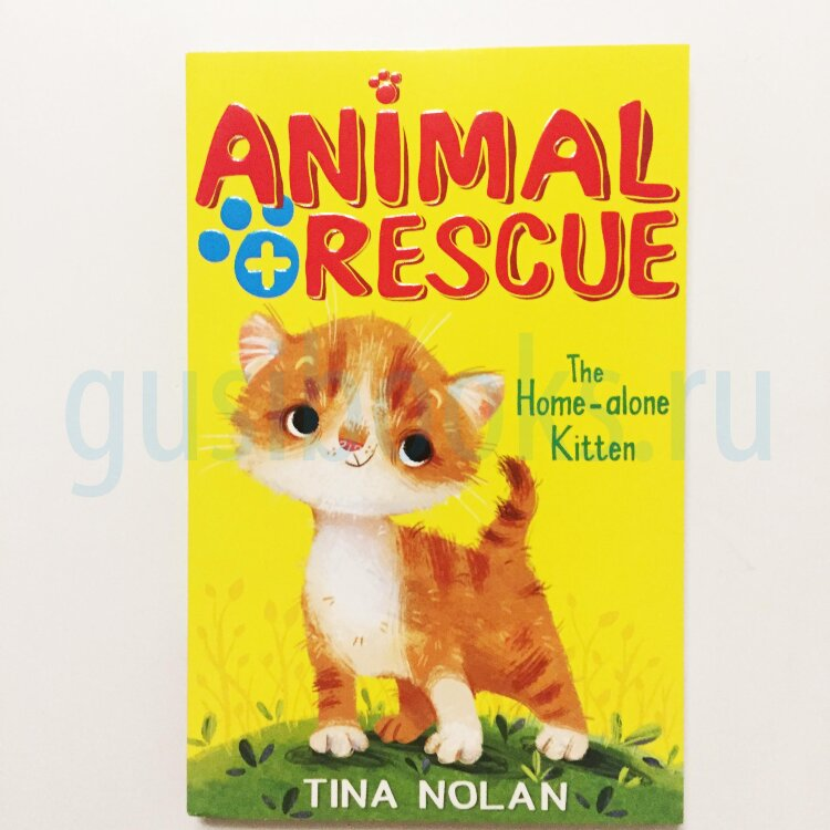 The Home-Alone Kitten  (Animal Rescue)